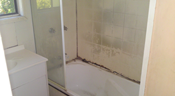 Bathroom Renovation - Before